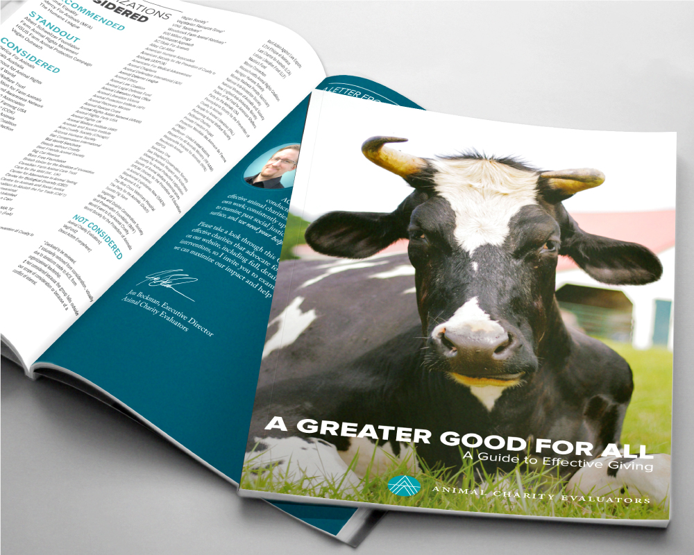 Branding and Print Design - Nonprofit fundraising booklet